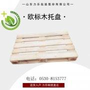 菏泽木箱子厂家 菏泽大型